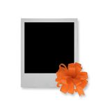 Single photo frame Stock Images