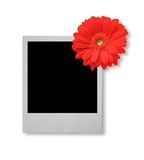 Single photo frame  Royalty Free Stock Photography