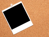 Single photogragh. Single instant photograph pinned to a corkboard Royalty Free Stock Photo