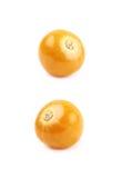 Single physalis fruit isolated Stock Image