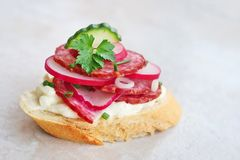Appetizer with salami, cheese, red radish and cucumber royalty free stock images