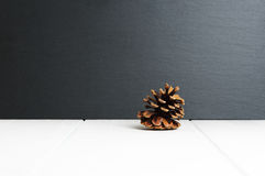 Free Single Pine Cone On White Wooden Surface And Black Slate Stone Background Stock Image - 93753791