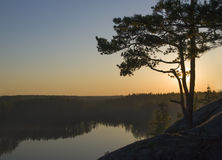 Single pine at top of the rock over  lake. Royalty Free Stock Images