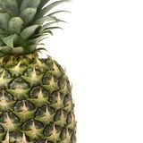 Single Pineapple offset Stock Photo