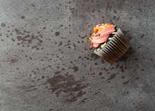 Single pink frosted chocolate cupcake on a gray background side view royalty free stock photography