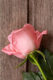 Single Pink rose with drops of water on wooden old background, v Royalty Free Stock Photo