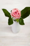 Single pink rose in porcelain vase on wooden table Royalty Free Stock Photo