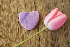 Single pink tulip and a stone heart Stock Photos