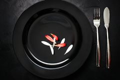 Single plate flatware black background. Single plate with fork and knife on black background. Dinner for one. Sarcastic weight loss diet concept Royalty Free Stock Photos