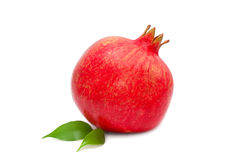 Single pomegranate isolated on white Stock Images