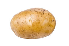 Single Potato Royalty Free Stock Images