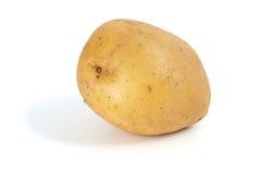 Single potato. Isolated on the white background Stock Image