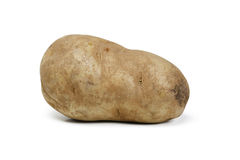 Single Potato Stock Photography