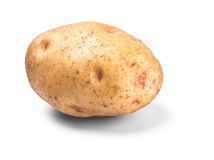 Single potato in peel Royalty Free Stock Image