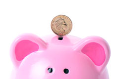 Pound on piggy Royalty Free Stock Image