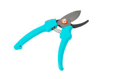 Single pruner Royalty Free Stock Images
