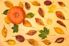 Single pumpkin with colorful autumn leaves on light yellow background. Pleasant autumn colors. Beautiful fall leaves