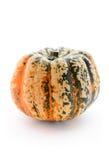 Single pumpkin Stock Images