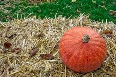 Single Pumpkin on Haystack Farm Decoration Autumn Fall Seasonal Royalty Free Stock Images