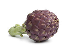 Single purple artichoke Royalty Free Stock Photography