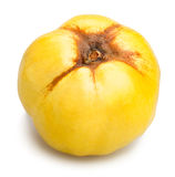 Single quince Royalty Free Stock Photo