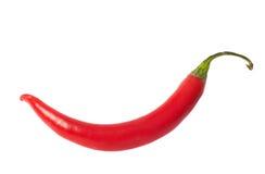 single röd varm isolerad peppar för chilin Royaltyfri Fotografi