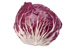 Single radicchio. Closeup of radicchio - isolated on white background Royalty Free Stock Images
