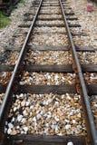 Single railroad Royalty Free Stock Photos