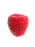 Single Raspberry Stock Photo