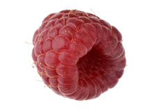 Single Raspberry Royalty Free Stock Photo