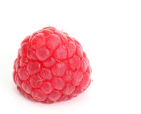 Single Raspberry isolated Stock Photography