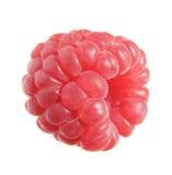 Single raspberry macro, white Royalty Free Stock Image