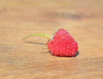 Single raspberry on wood Stock Photo