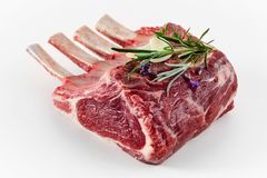 Single portion rack of lamb with bone-in chops. Single raw portion rack of lamb with bone-in chops topped with a sprig of fresh rosemary for seasoning on white stock image