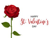 Realistic red rose valentines card. Single realistic red rose St Valentine`s day card. Love single flower Valentines banner frame. Beautiful holiday blossom Stock Photos