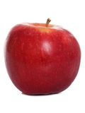 Single red apple Stock Image