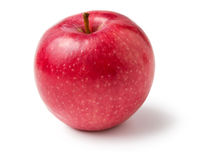 Free Single Red Apple Stock Image - 27064871