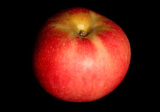 Single red apple. On black background stock image