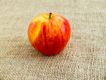 Single red apple on canvas. Photo of the Single red apple on brown canvas stock photos