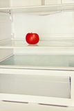 Single red apple in domestic refrigerator. Toned image royalty free stock photos