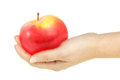 Single red apple in a hand of woman. Isolated on white background. Close-up. Studio photography stock photos