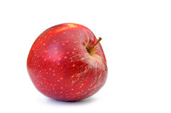 Single red apple isolated on white background. The single red apple isolated on white background stock images