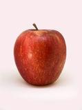 Single red apple isolated on a white background. Studio shoot stock photos