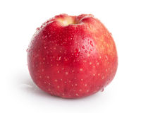 Single red apple. On white background royalty free stock photo