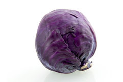 Single red cabbage. Isolated on white background royalty free stock image