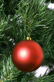 Single red christmas ornament on tree. Shot of a single red christmas ornament on tree Stock Images