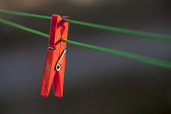 Single red clothes peg. Royalty Free Stock Image