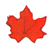 Single red fake fall leaf on a white background. A single artificial fall leaf on a white background Royalty Free Stock Photos