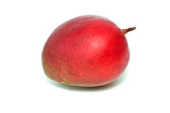 Single red mango fruit. Isolated on the white background Royalty Free Stock Photography