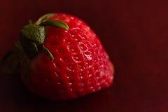 A single, red, organic strawberry. Stock Photo